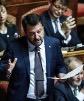 Salvini al Senato.jpg