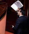 Salvini 3 .jpeg