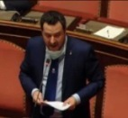 Salvini al Senato.jpeg